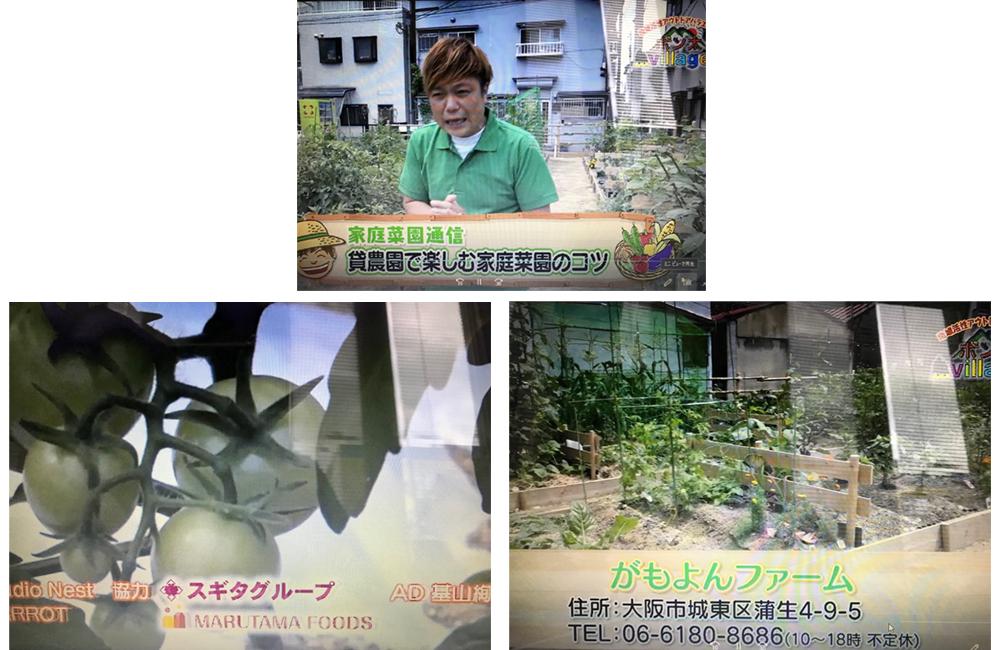 J:COMテレビ「地域活性アウトドアバラエティ ポン太Village」
